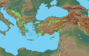 Ophiolite distribution in the Eastern Mediterranean, with the location of Cayonu/Ergani marked in red. The Bitlis-Zagros Suture zone runs through here and toward Cyprus.